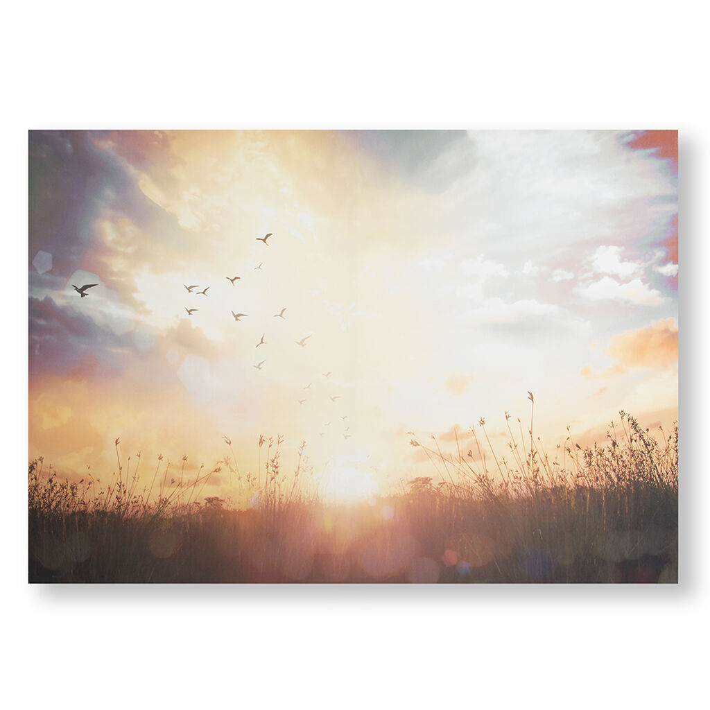 Serene Sunset Meadow Printed Canvas Wall Art, , large