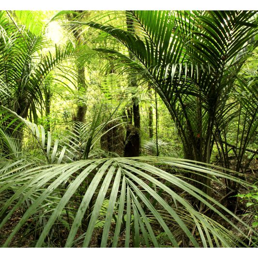 Tropical Wall Mural, , large