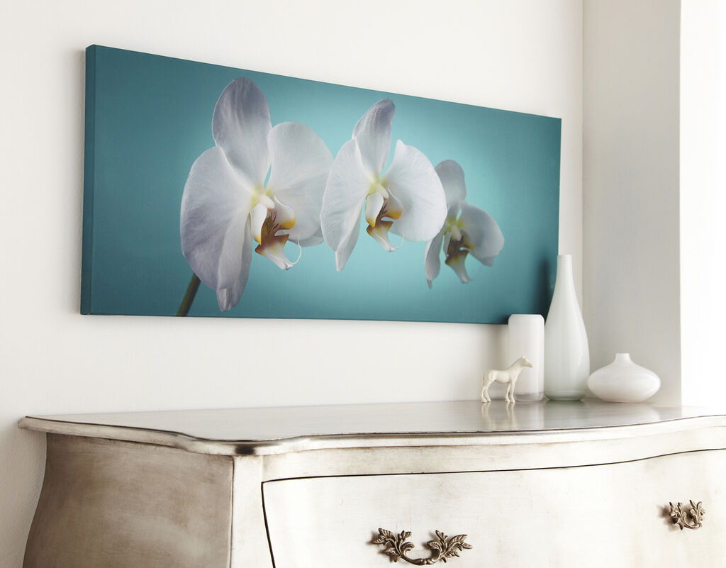Teal Orchid Wall Art - GrahamBrownUS