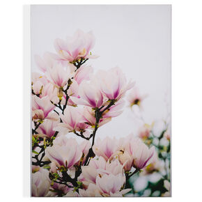 Bedruckte Leinwand Magnolia Blossoms, , large