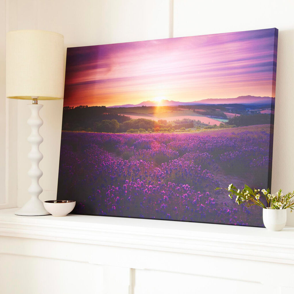 Lavender Sunset Printed Canvas, , large