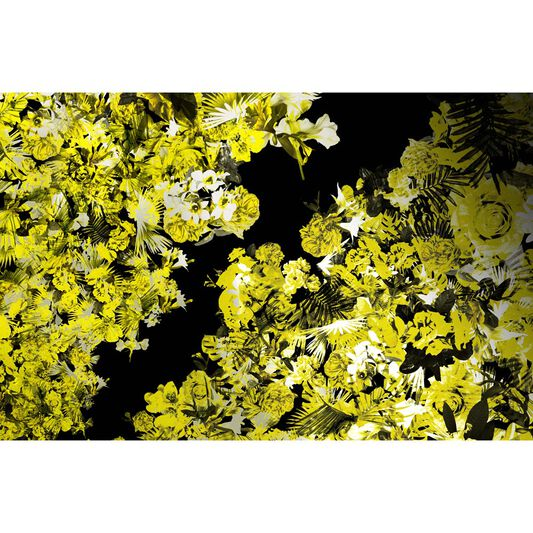 Vixen Yellow Ready Made Mural, , large