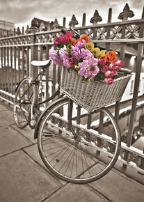 Bicycle Printed Canvas, , large