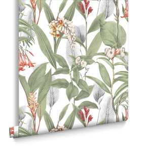 Botanical Powder Wallpaper, , large