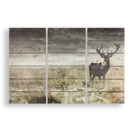 Highland Stag Print On Wood Wall Art, , large