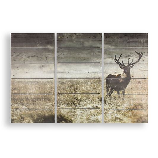 Highland Stag Print On WoodWall Art, , large