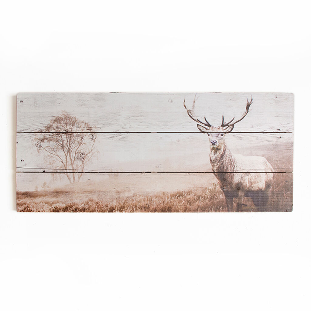 Stag Print On Wood Wall Art, , large