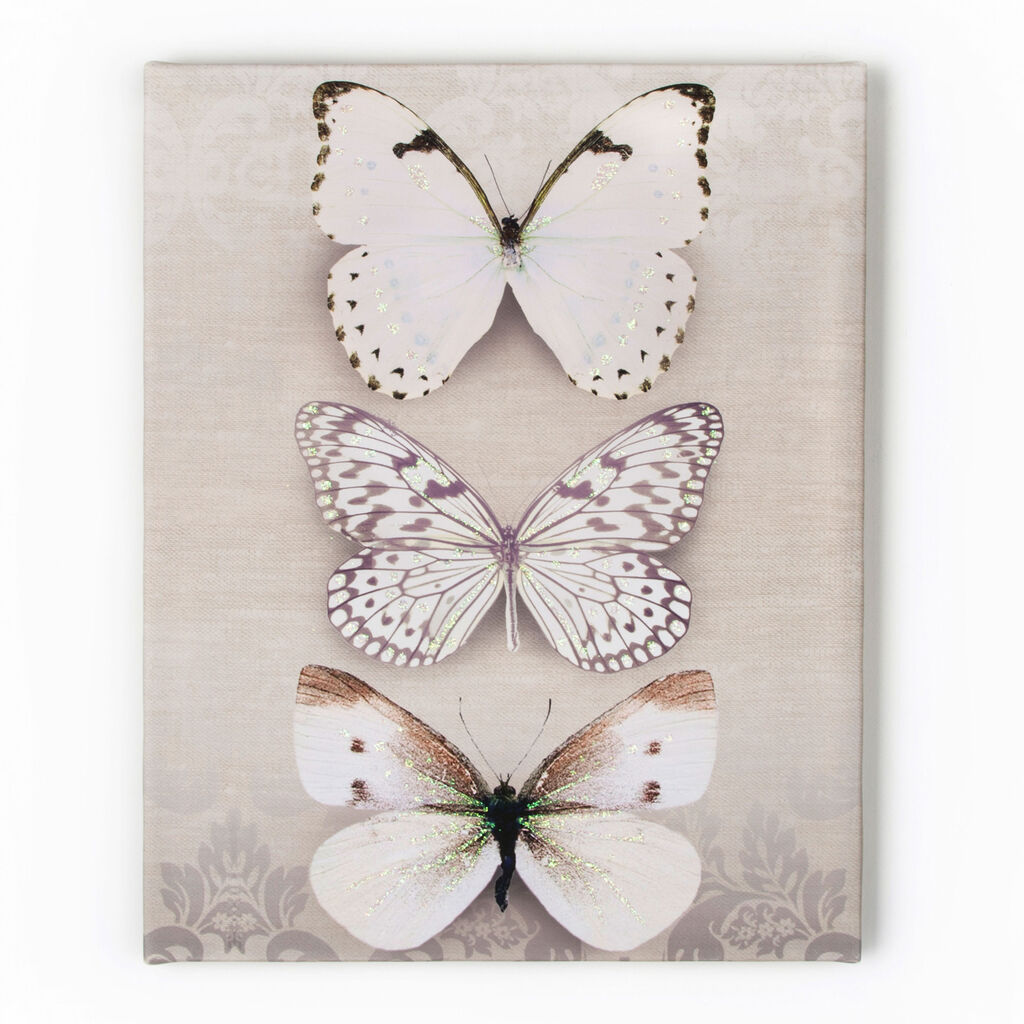 Butterfly Trio Printed Canvas, , large