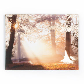Metallic Forest Printed Canvas Wall Art, , large