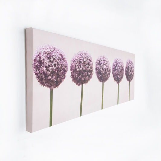 Toile Imprimée Row Of Alliums, , large