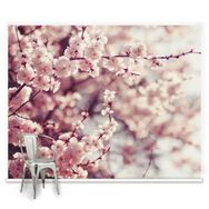 Fotobehang Romantic Blossom, , large