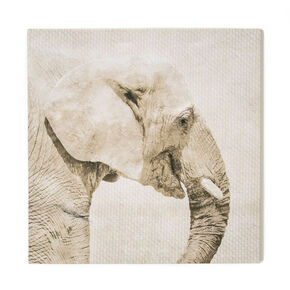 Trunk Printed Canvas, , large