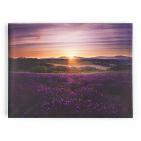 Lavender Sunset Printed Canvas Wall Art , , large