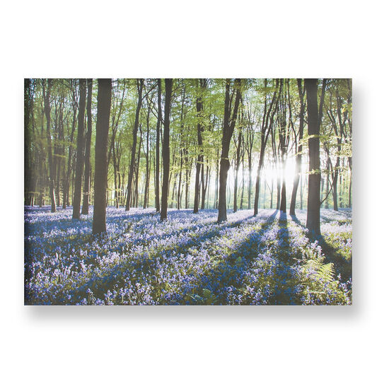 Bluebell landscape printed canvas