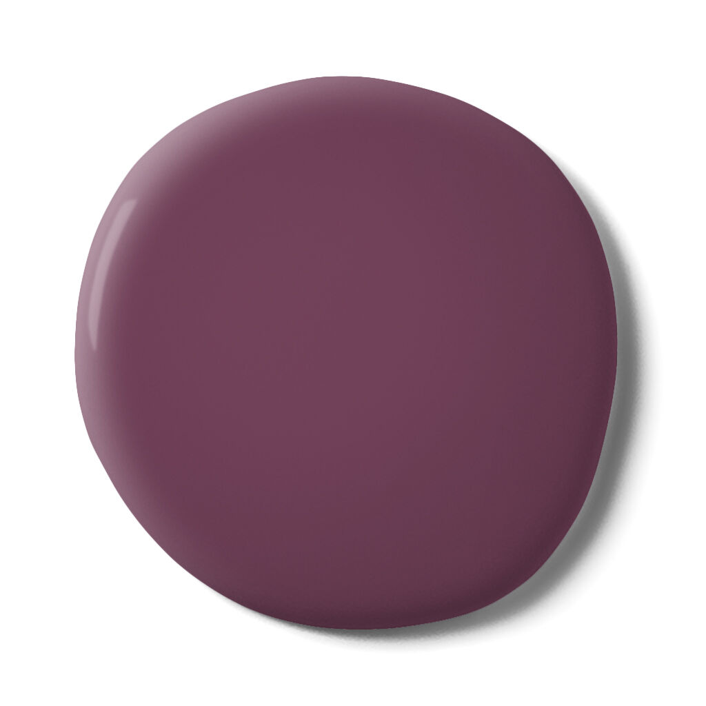 Nightshade Durable Matt Emulsion Sample, , large
