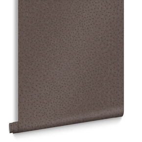 Ostrich Brown Wallpaper, , large