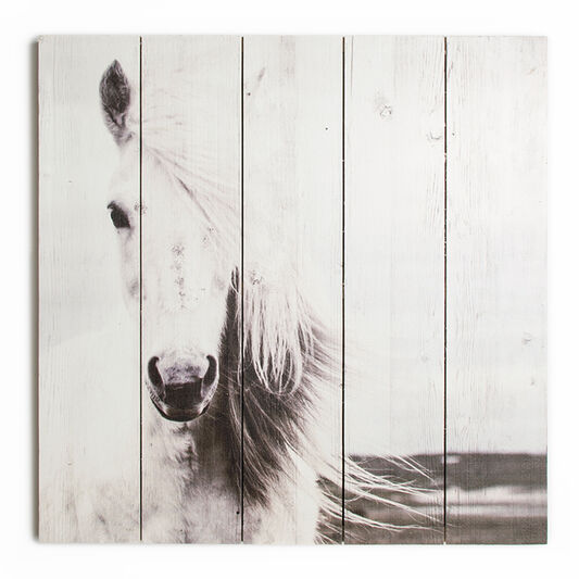 Horse Print On Wood Wall-art, , large