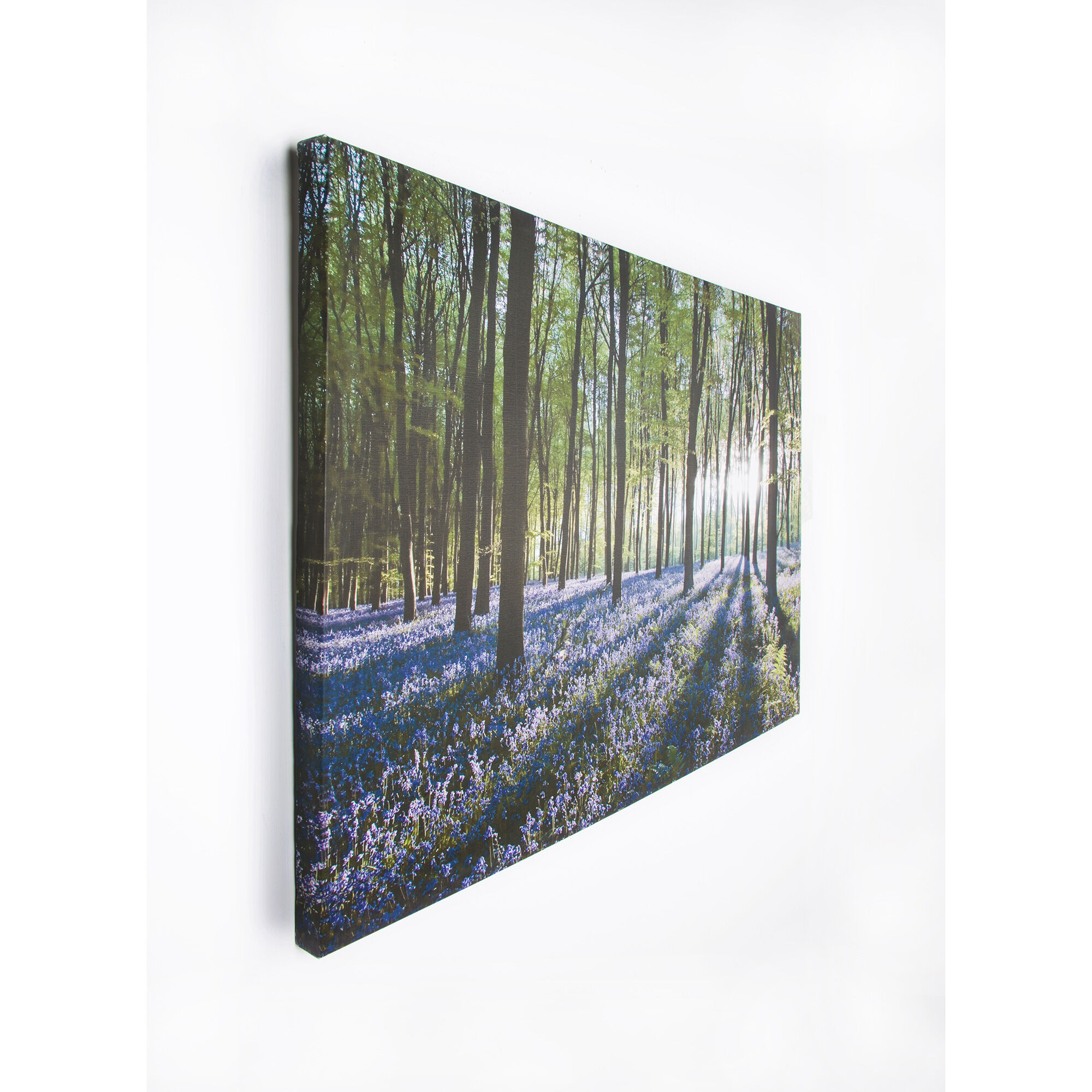 Bluebell Landscape Printed Canvas Wall Art, ...