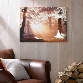 Metallic Forest Printed Canvas Wall Art , , large