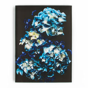 Blooms In Blue Printed Canvas Wall Art , , large