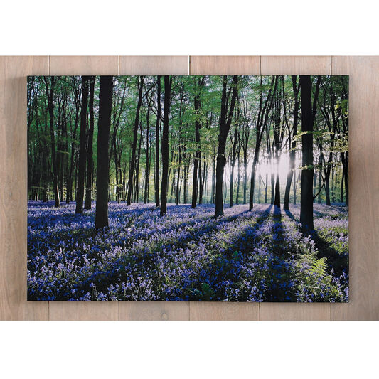 Bluebell Landscape Printed Canvas, , large