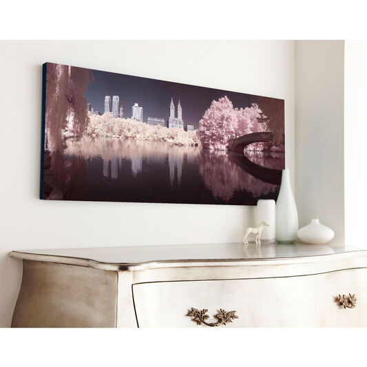Central Park Printed Canvas Wall Art, , large
