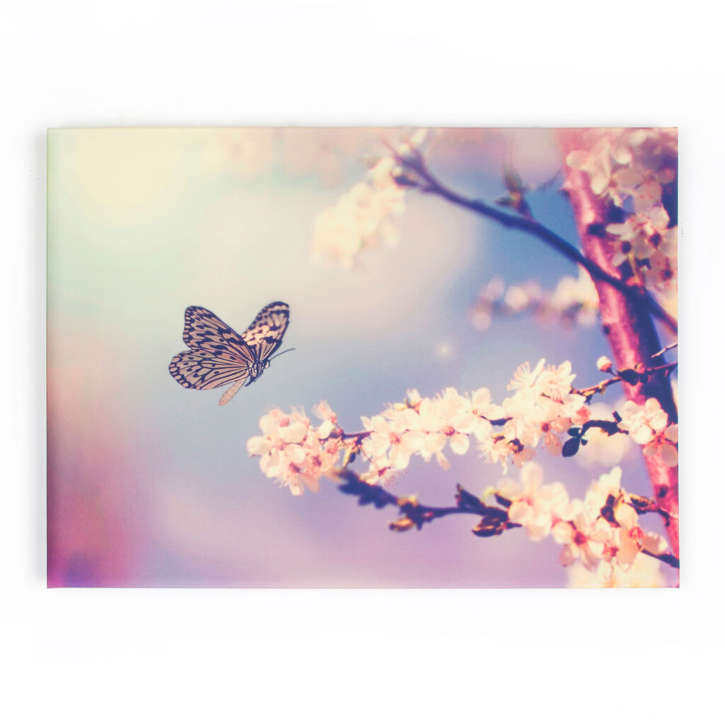 Butterfly Branch Printed Canvas Wall Art, , large