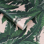Daintree Palm Blush Wallpaper