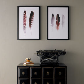 Feather Duo Framed Print Wall Art  Wall Art, , large