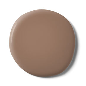Hot Mocha Paint, , large
