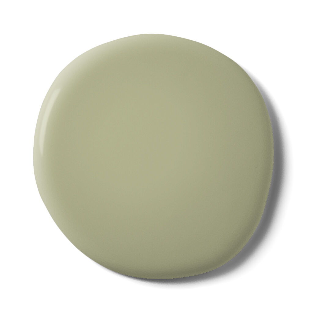 Turtle Shell Paint, , large