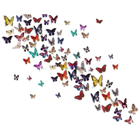 Release The Butterflies Ready Made Mural, , large