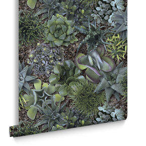 Succulent Greens Wallpaper, , large