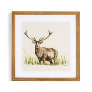 Countryside Stag Framed Wall Art Print, , large