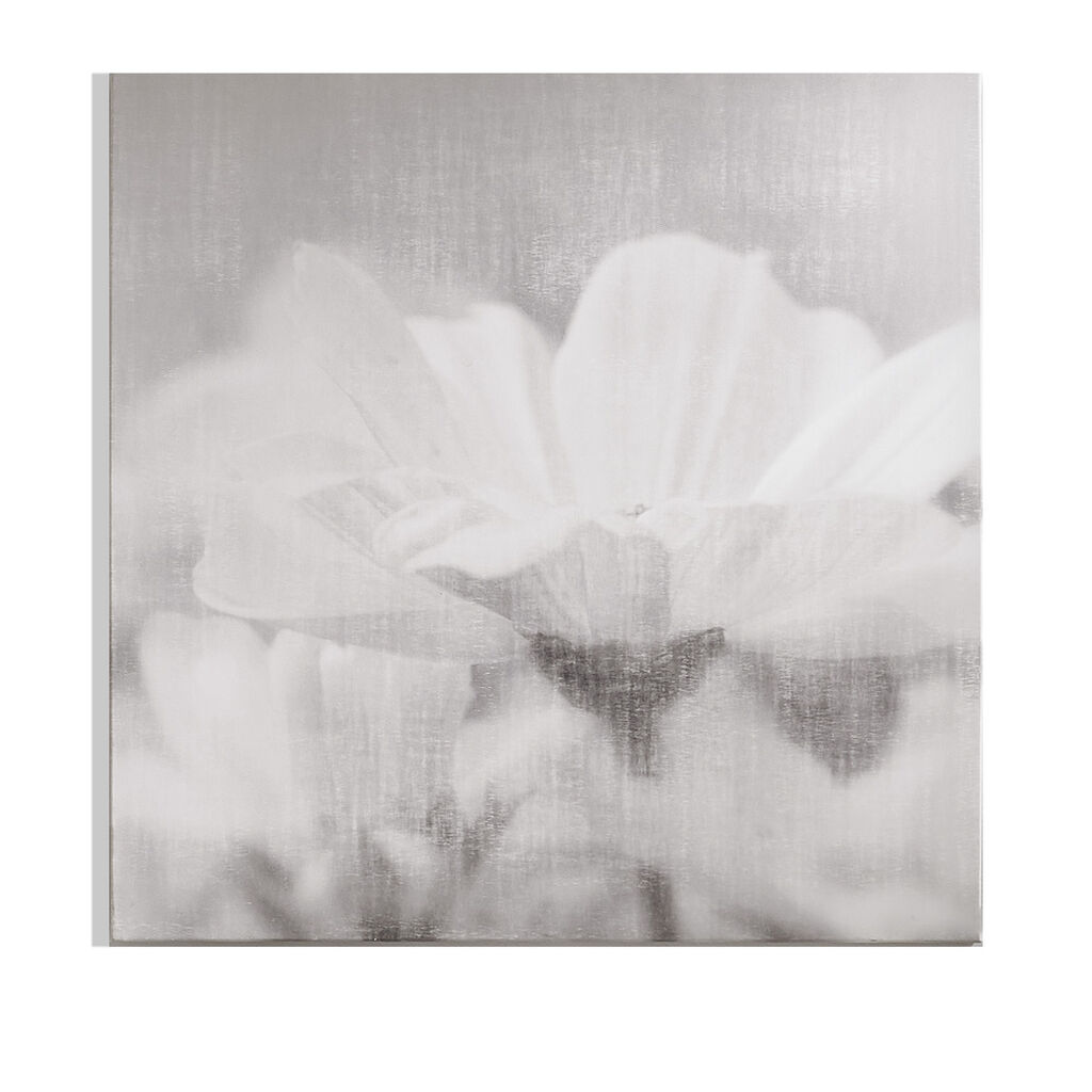 Daisy Daydreams Printed Canvas Wall Art, , large