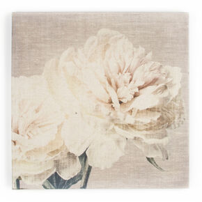 Cream Petals Fabric Canvas Wall Art , , large