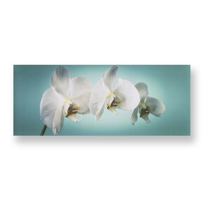 Teal Orchid Wall-art, , large