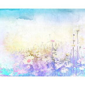 Fotobehang Hazy Meadow, , large
