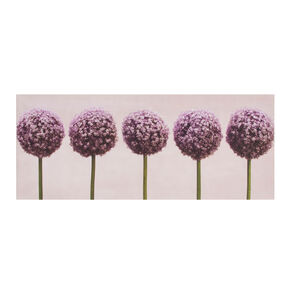Row Of Alliums Printed Canvas Wall Art, , large