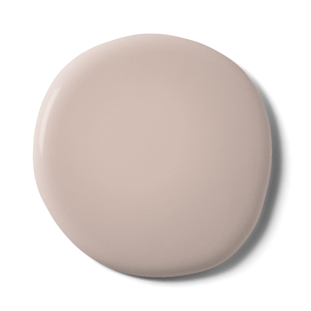 Muted Blush Paint, , large