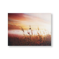 Déco Murale Imprimée sur Toile Morning Sunrise Meadow, , large
