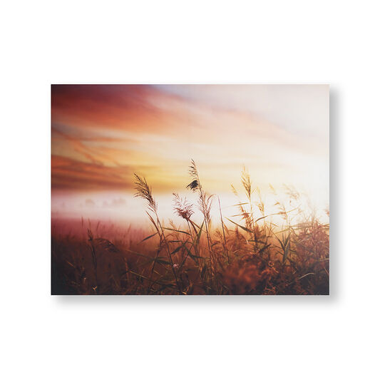 Morning Sunrise Meadow Printed Canvas Wall Art, , large