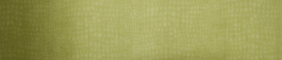 Green Wallpaper Light Dark Green Wallpaper Graham Brown CA - Green and brown wallpaper